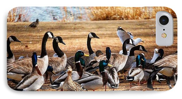 IPhone Case featuring the photograph Bird Gang Wars by Sumoflam Photography