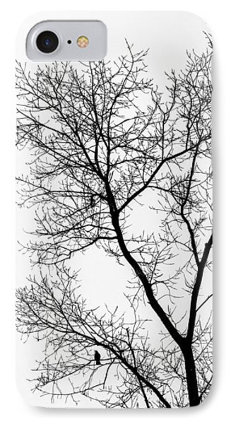 Bird In Tree IPhone Case