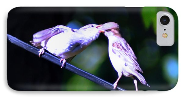 Bird Kiss Phone Case by Bill Cannon