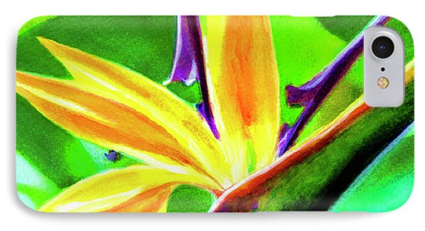 Bird Of Paradise #262 Phone Case by Donald k Hall