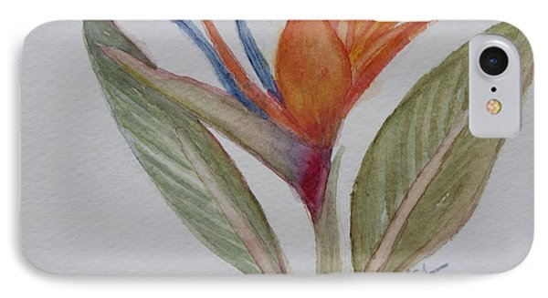IPhone Case featuring the painting Bird Of Paradise by Donna Walsh