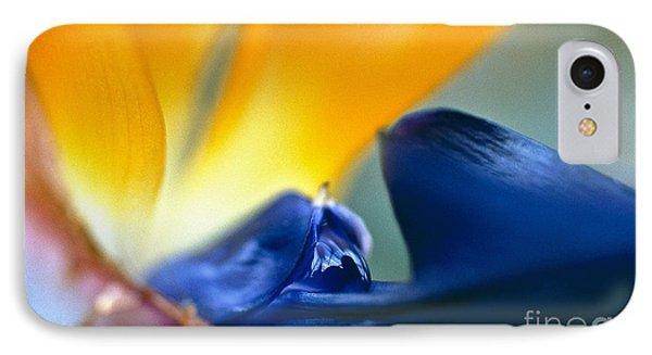 Bird-of-paradise Phone Case by Heiko Koehrer-Wagner