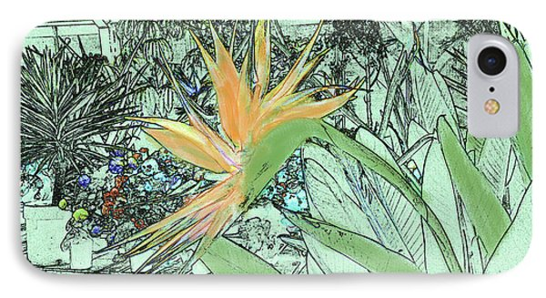 IPhone Case featuring the photograph Bird Of Paradise In The Hothouse by Nareeta Martin