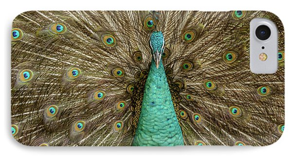 IPhone 7 Case featuring the photograph Peacock by Werner Padarin