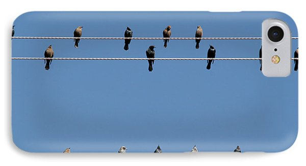 Bird On A Wire Phone Case by Christine Till