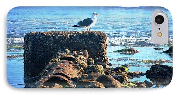 Bird On Perch At Beach IPhone Case by Matt Harang