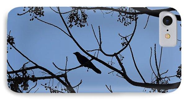Bird On The Tree IPhone Case by Sumit Mehndiratta