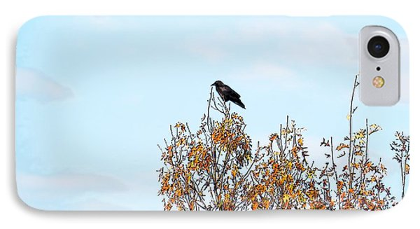 Bird On Tree IPhone Case by Craig Walters