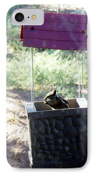 Bird Seed Thief Chipmunk IPhone Case by Joseph Frank Baraba