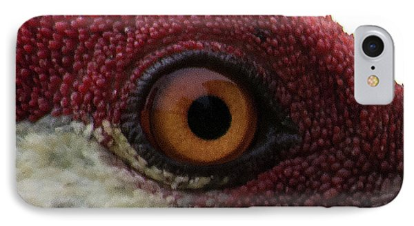 IPhone Case featuring the photograph Birds Eye by Brian Jones