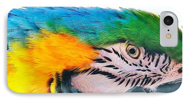 IPhone Case featuring the photograph Bird's Eye View by Al Fritz