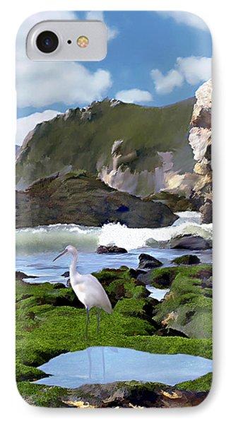 Bird's Eye View Phone Case by Kurt Van Wagner