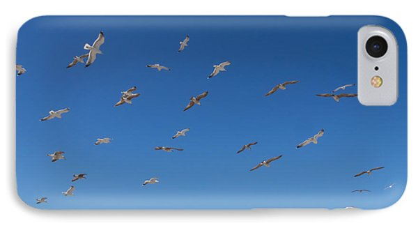 Birds Flying Along The Waters Edge IPhone Case