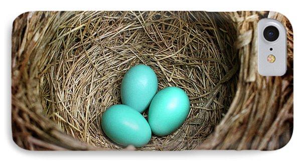 Birds Nest American Robin IPhone 7 Case by Christina Rollo