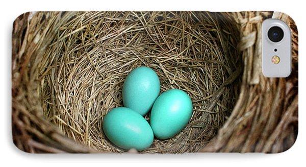 Birds Nest American Robin IPhone Case by Christina Rollo