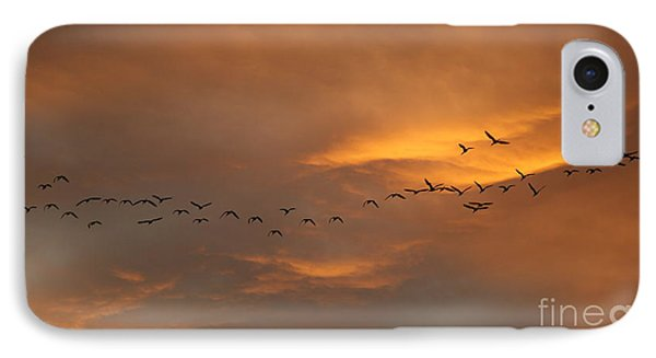 Birds Over San Miguel De Allende Phone Case by John  Kolenberg