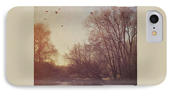 IPhone Case featuring the photograph Birds Take Flight Over Lake On A Winters Morning by Lyn Randle