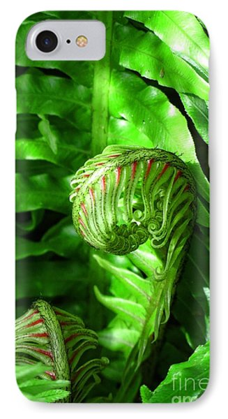 Birth Of A Fern IPhone Case by Autumn Moon