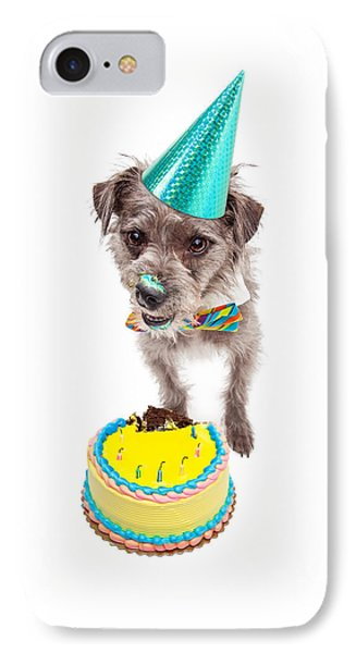 Birthday Dog Eating Cake IPhone Case by Susan Schmitz