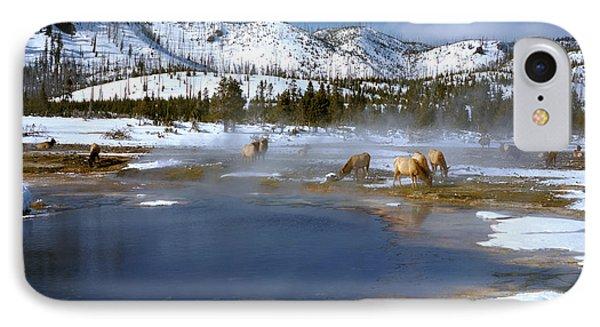 Biscuit Basin Elk Herd IPhone Case by Ed  Riche