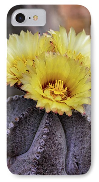 IPhone Case featuring the photograph Bishop's Cap Cactus  by Saija Lehtonen