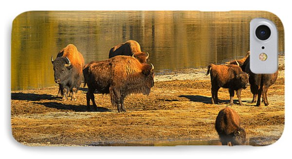 IPhone Case featuring the photograph Bison Family Crossing by Adam Jewell