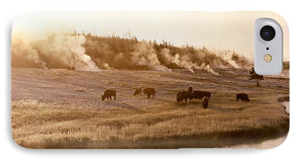Bison Firehole River Yellowstone IPhone Case by Panoramic Images