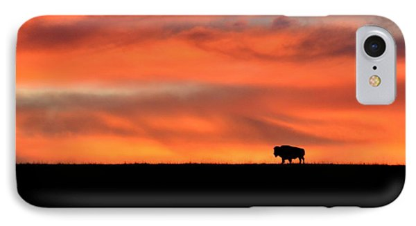 Bison In The Morning Light IPhone Case by Keith Stokes