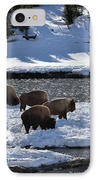 IPhone Case featuring the photograph Bison On River Strand by Kae Cheatham