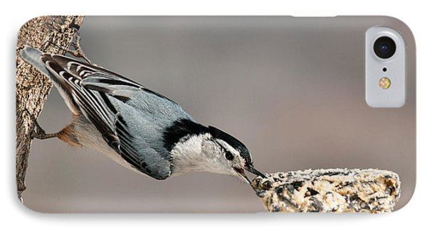 IPhone Case featuring the photograph Bit Off More Than He Could Chew by Lara Ellis