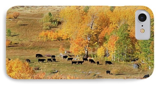 IPhone Case featuring the photograph Black And Gold by Donna Kennedy