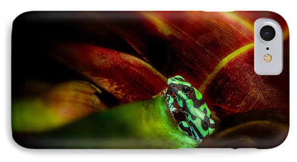 IPhone Case featuring the photograph Black And Green Dart Frog In The Red Bromeliad by Rikk Flohr