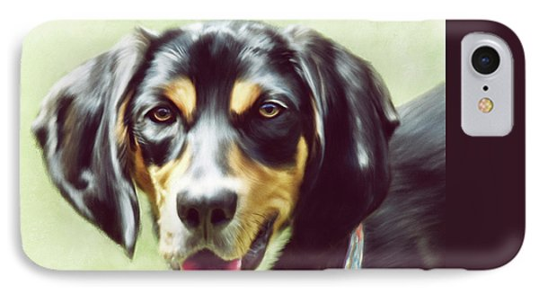 Black And Tan IPhone Case by Lois Bryan