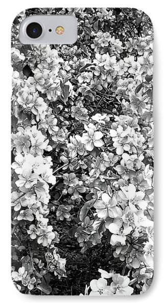 IPhone Case featuring the photograph Black And White Beautiful Blossoms by Aimee L Maher Photography and Art Visit ALMGallerydotcom