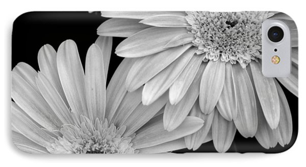 Black And White Gerbera Daisies 1 Phone Case by Amy Fose