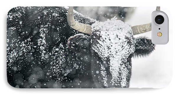 Black And White IPhone Case by Mike Dawson