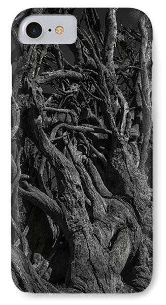 Black And White Roots IPhone Case by Garry Gay