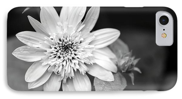 IPhone Case featuring the photograph Black And White Sunrise Coreopsis by Christina Rollo
