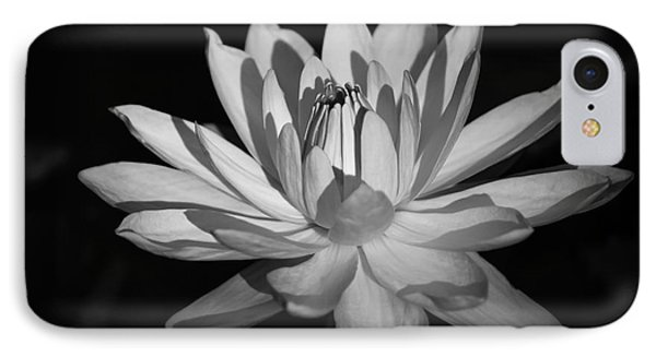 Black And White Waterlily IPhone Case by Liesl Walsh