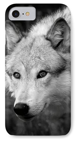 Black And White Wolf IPhone Case by Steve McKinzie