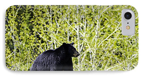 Black Bear IPhone Case