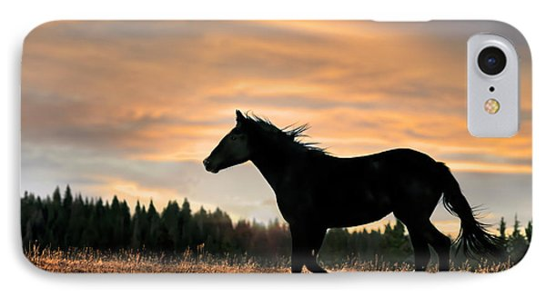 Black Beauty At Sunset IPhone Case by Leland D Howard