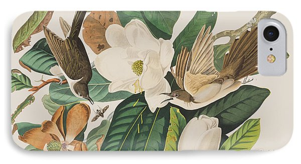 Cuckoo iPhone 7 Case - Black Billed Cuckoo by John James Audubon