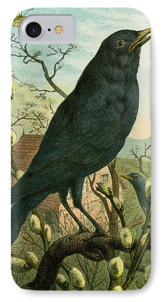 Black Bird IPhone Case by English School