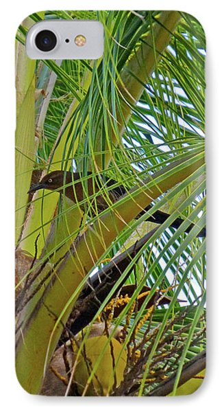 IPhone Case featuring the photograph Black Bird In Tree by Francesca Mackenney