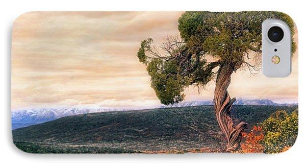 Black Canyon Juniper - Colorado - Autumn Phone Case by Jason Politte