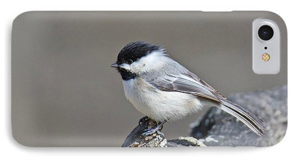 IPhone Case featuring the photograph Black Capped Chickadee 1128 by Michael Peychich