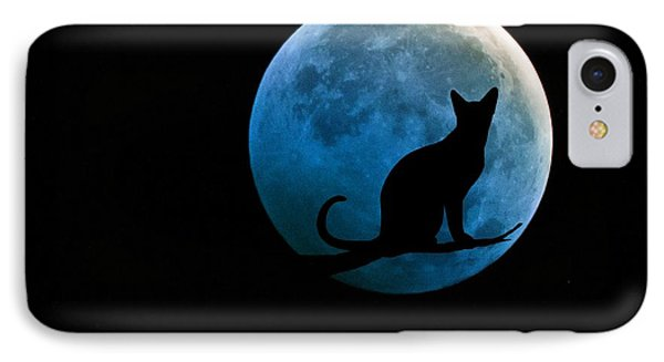 Black Cat And Blue Full Moon IPhone Case
