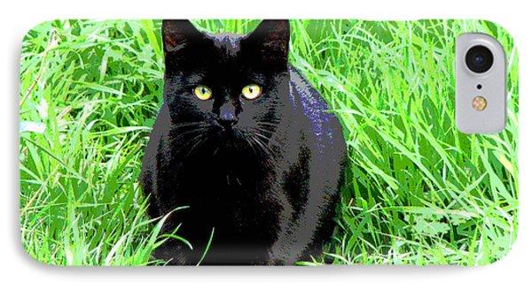Black Cat In A Green Field IPhone Case