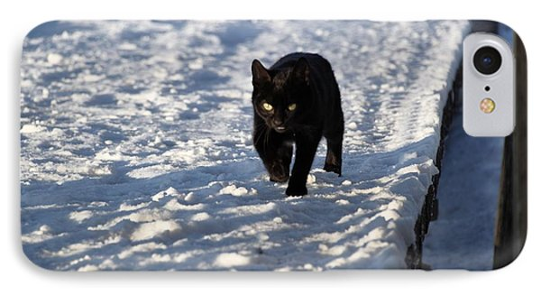 Black Cat In Snow IPhone Case